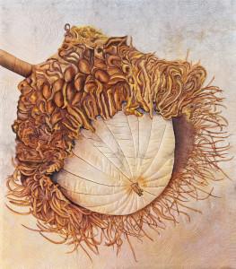 14 mossy cup oak  240 jpeg